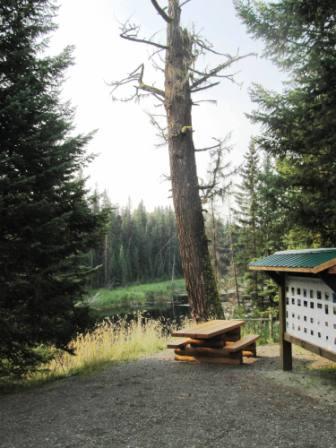 Pioneer trail 3